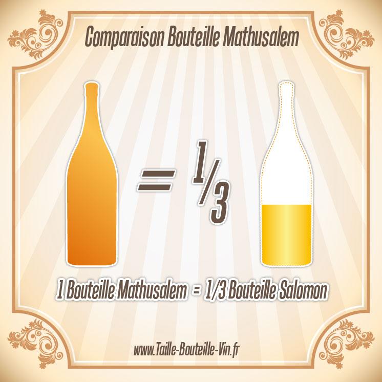 mathusalem comparaison d 39 une bouteille mathusalem et salomon. Black Bedroom Furniture Sets. Home Design Ideas
