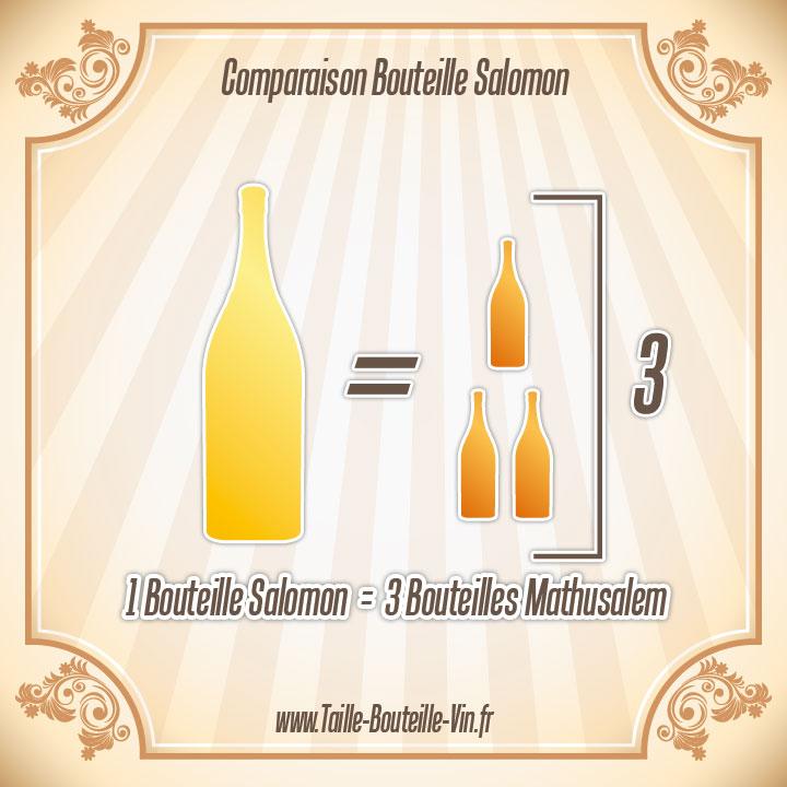 Salomon : Tout sur la bouteille de champagne Salomon